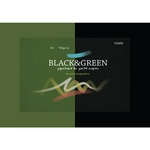 Альбом для пастелей Kroyter Black and Green А3, черный и зеленый, 10 листов