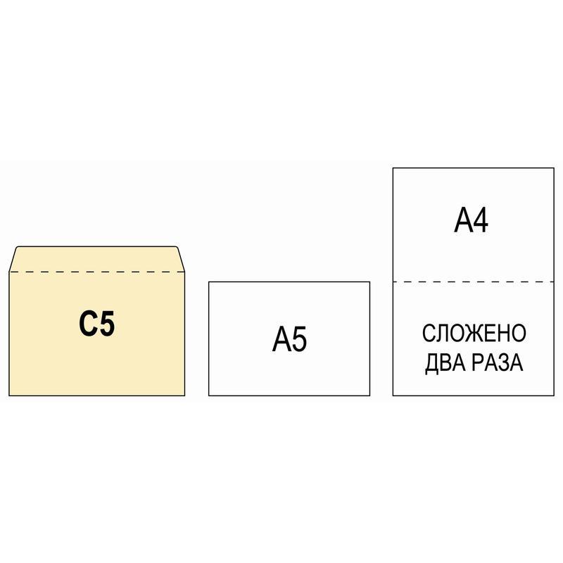 Размеры открытки под евроконверта